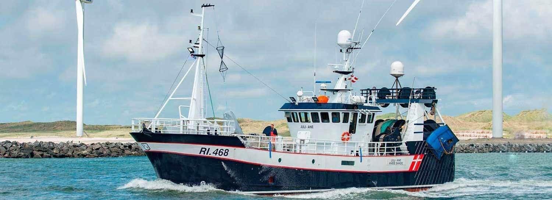 ship-img